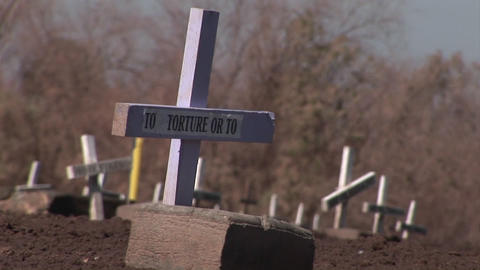 Crosses mark graves of people who are not forgotten Stock Video Footage
