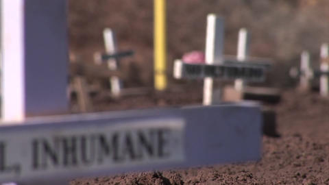 Many crosses and gravestones have been mounted in a cleared field as a demonstration Footage