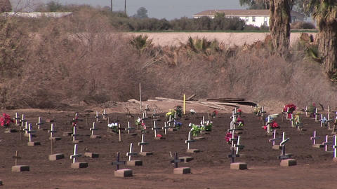 A graveyard is filled with rows of graves marked with small crosses Footage