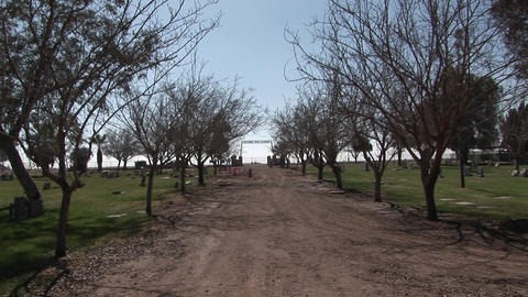 A well-traveled tree-lined dirt road leads out to the horizon Footage