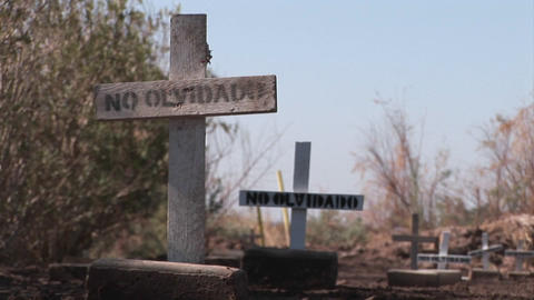 A pathway is lined with plain wooden crosses marked only... Stock Video Footage
