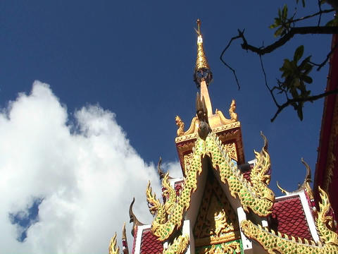 Birds fly around the top of an ornate gold building Stock Video Footage
