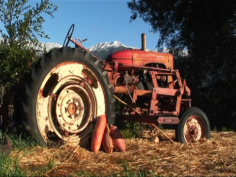 A tractor is parked by a tree Stock Video Footage