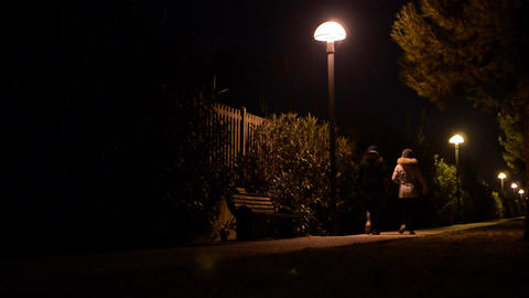 Young girls walking on a path in the park lit by several lamps placed on tall po Footage