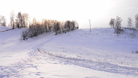 Tourist walking on a path carved into the snow which goes under a grove young Footage
