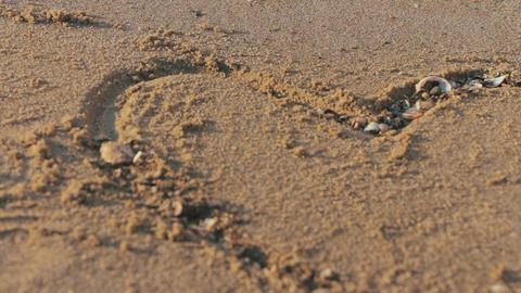 Carefree unrecognizable girl places seashells in a drawn heart shape on wet sand at exotic sunset Live Action