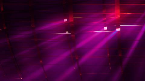 Elegant Grid Light Rays Meganta_01
