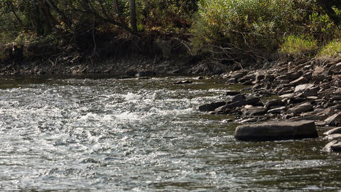 Мountain river Footage