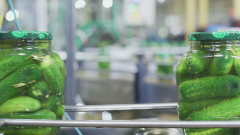 Canning plant. Automatic line for processing vegetables. Canned cucumbers. Glass Live Action