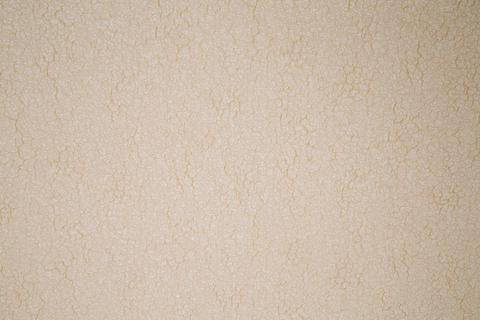 Classic paper wall texture Photo