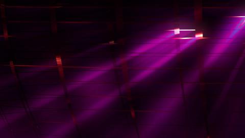 Elegant Grid Light Rays 81 Animation
