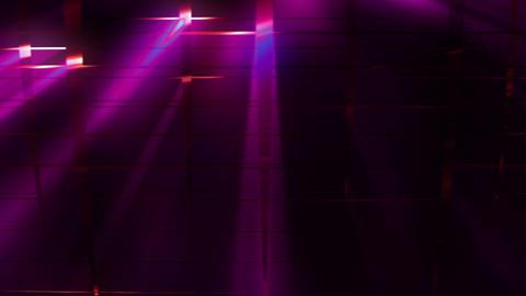 Elegant Grid Light Rays 83 Animation
