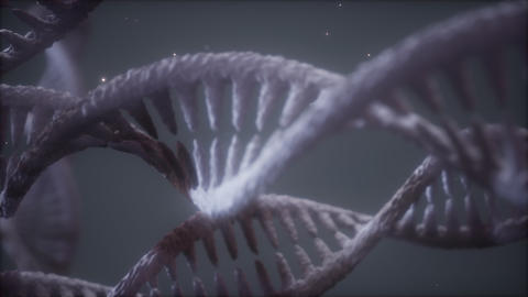 double helical structure of dna strand close-up animation Live Action
