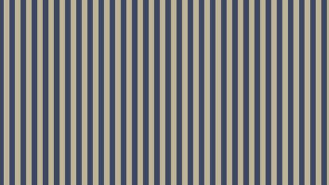 Diagonal-stripes-B-Dark blue-gray Animation