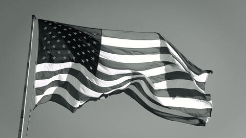 American Flag Slow motion Waving. Black and White Live Action