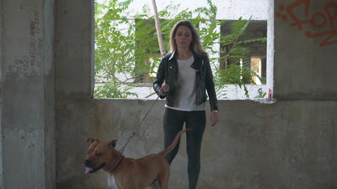 The concept of friendship man and dog. Young blonde with a dog breed American Live Action
