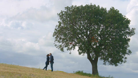 Young couple hugging and kissing under big green tree, eternal love forever Footage