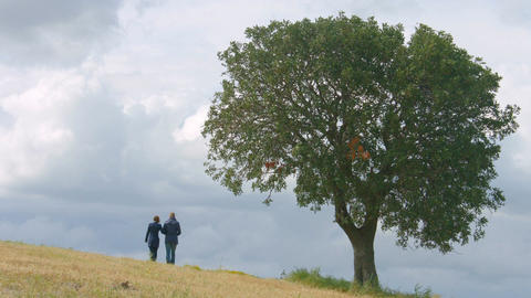 Husband and wife walking in field hand in hand, married couple together forever Footage