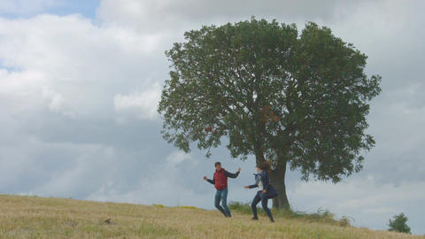Happy friends enjoying freedom, celebrating success, jumping in field together Footage