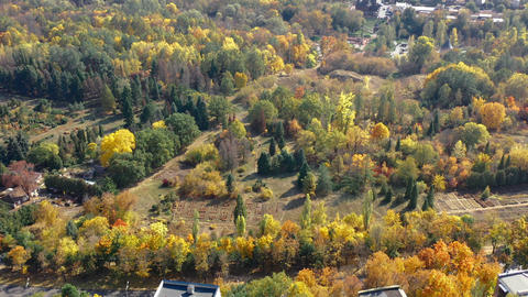 Extensive top view of beautiful autumn forest with many beautiful trees Live Action