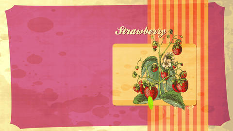 aged harvest publicity with ascending weed total of pure red appealing little and grown strawberries Animation