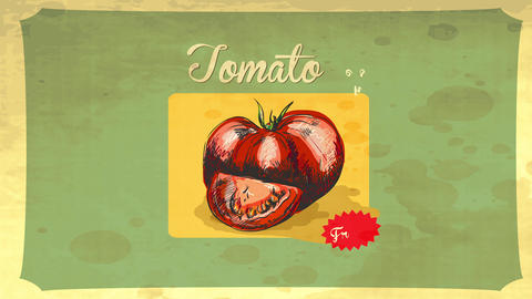 retro styled tomato hand drawn with pencil and painted with red watercolor over a vintage paper Animation