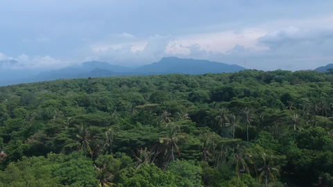 take off on a drone up tropical jungle and mountains of blue against the blue Live Action