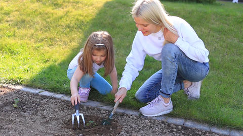 Mother and daughter plant a plant in the ground Live Action