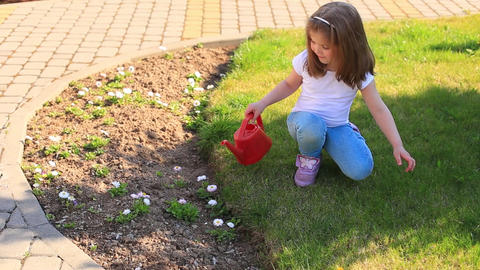 Little girl watering flowers from a red watering can on a flower bed Live Action
