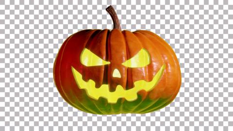 Pumpkin 3Dモデル