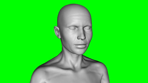 3D model aging woman, green background, animation Live Action