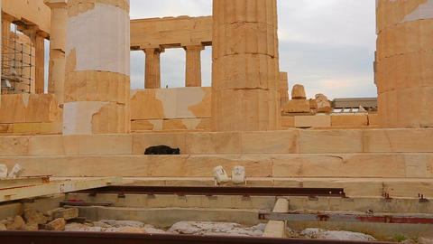 Dog sleeping on stairs of ruins of majestic ancient building, cultural heritage Footage