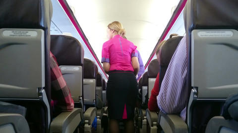 Airline hostess serving lunch and drinks to flight passengers. Travel abroad Footage