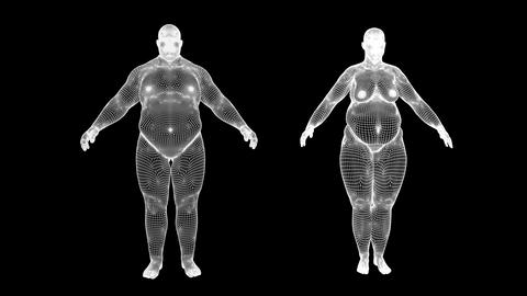 fat man and a fat woman transform an athletes, Alpha Channel, body texture and m Animation