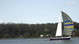 Annapolis Maryland Naval Academy Sailing Sailboats 4K 051 Footage