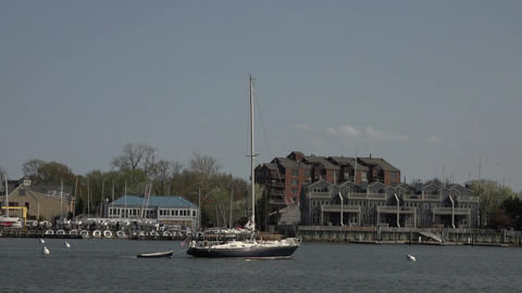 Annapolis Maryland marina sailboat return to harbor 4K 045 Footage