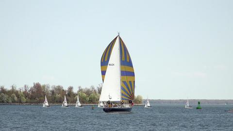 Annapolis Naval Academy Sailing sailboats water 4K 054 Footage