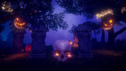 For hallowen Animation