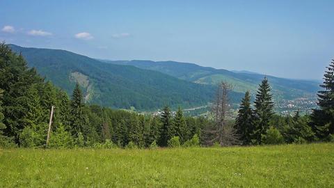 Mountains in Carpathians Live Action