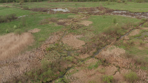 Peat bogs near the swamp. Wetlands. Video recording from a quadrocopter Live Action