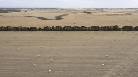 Drone aerial footage of rolled hay bales in a dry agricultural field Live Action