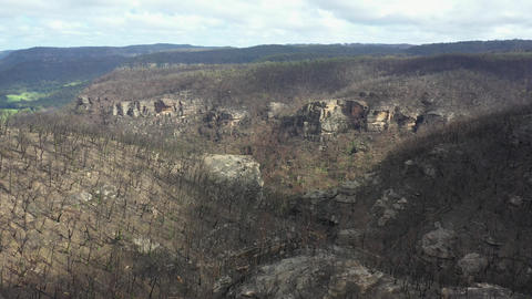 Drone aerial footage of forest regeneration after the Blue Mountains bush fires in Australia Live Action