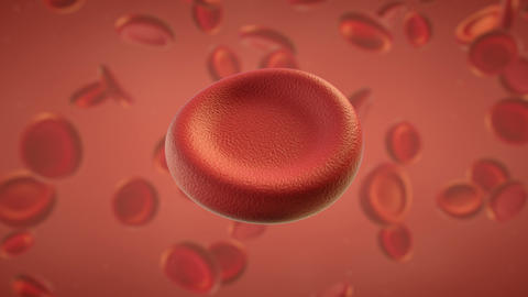 Red blood cell 3D render seamless loop animation Animation