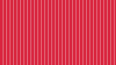 縦のストライプ 赤 極細 ループ CG動画