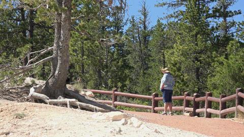 Bryce Canyon National Park trail woman hiking Utah 4K 139 Footage
