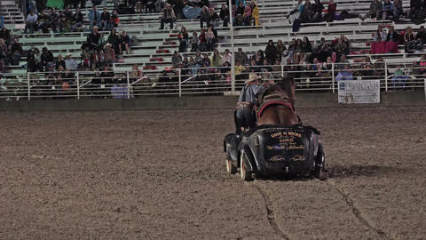 Cowboy and Mustang horse driving in car rodeo HD 295 Footage