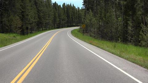 Driving POV Grand Teton NP forest highway 4K Archivo
