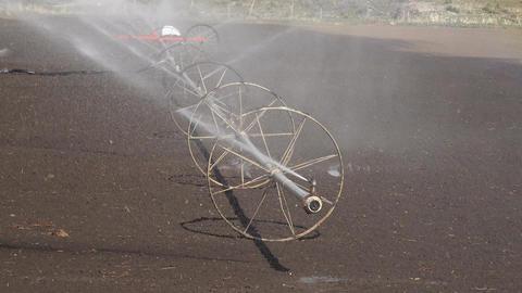 Farm irrigation sprinkler agriculture field 4K 003 Footage