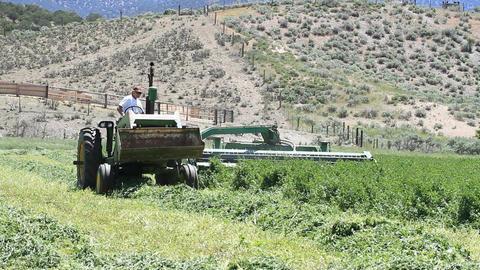 Farm tractor approach cutting hay P HD 1042 Footage