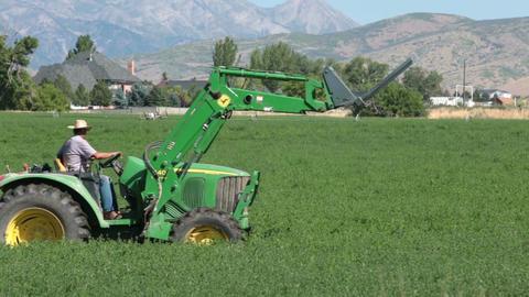Farmer rural community cut alfalfa hay tractor P HD 2388 Footage